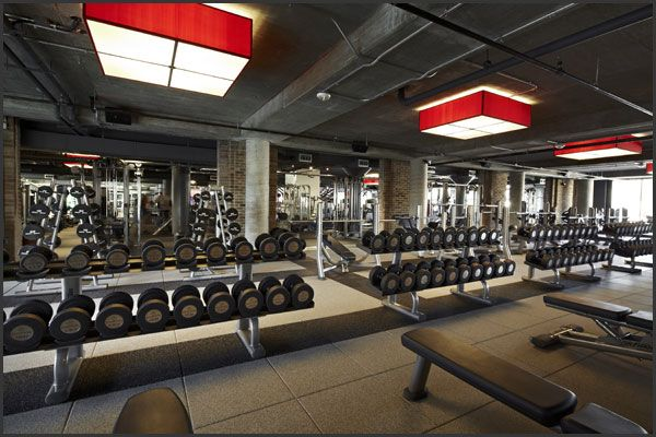 Gyms and Fitness Clubs in Harrogate